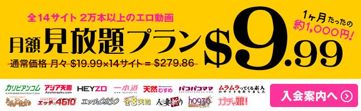 【Hey動画】人気14サイト月額約1,000円でずっーと見放題プラン販売中!【数量限定】